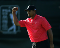 Tiger Woods successfully defended his title by defeating Jose Maria Olazabal and Nathan Green in a playoff.  (Photo by Donald Miralle/Getty Images)