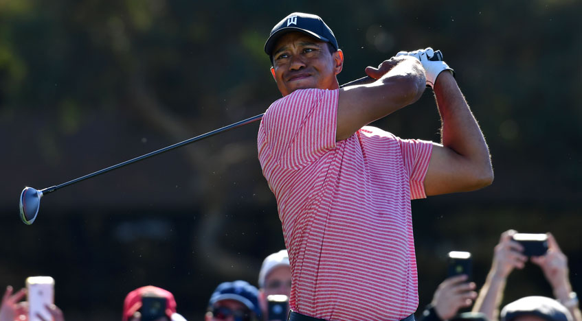 tiger woods looking for players peak